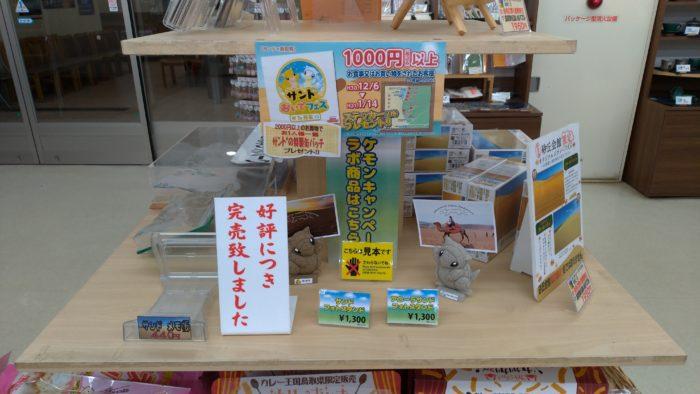 鳥取砂丘で色違いサンド
