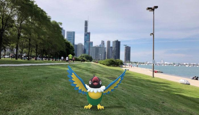 シカゴの美しさにペラップ