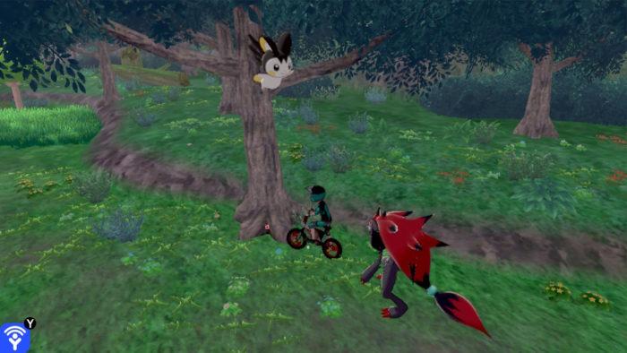 木から木へと飛んで移動している!?